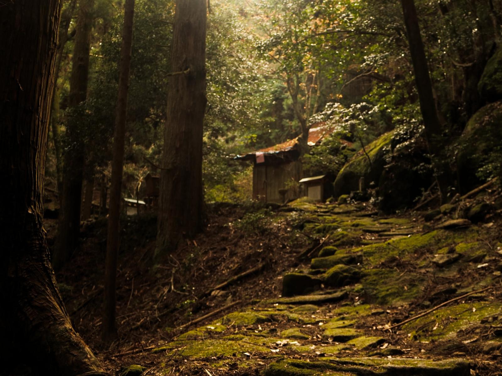 Mt. Yakiyama pathway Kumano Kodo Iseji Route.jpg