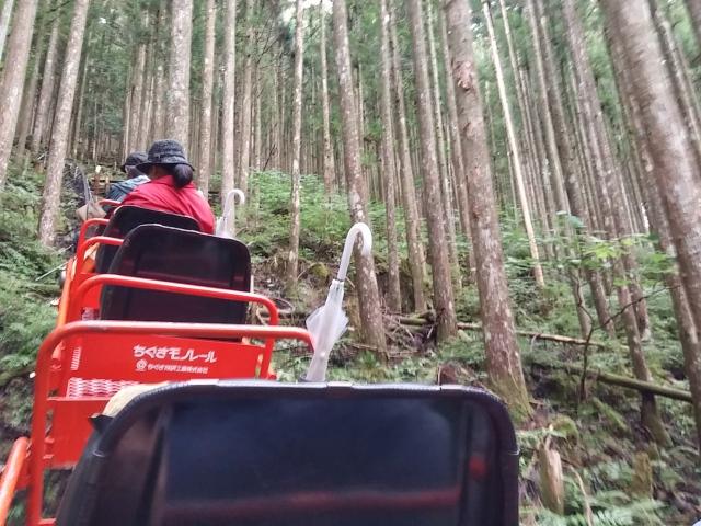 secret-japan-travel-nara-goyomatsu-limestone-cave-off-the-beaten-track-destinations-forest-roller-coaster-monorail-transport-reviews-tips-photos-5.jpg