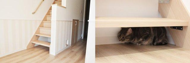 cat-friendly-apartment-house-japan-cute-felissimo-cats-kawaii-love-pets-animals-kobe-rent-11.jpg