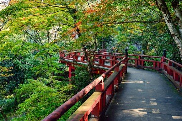 rsz_japan-1805866_1280.jpg