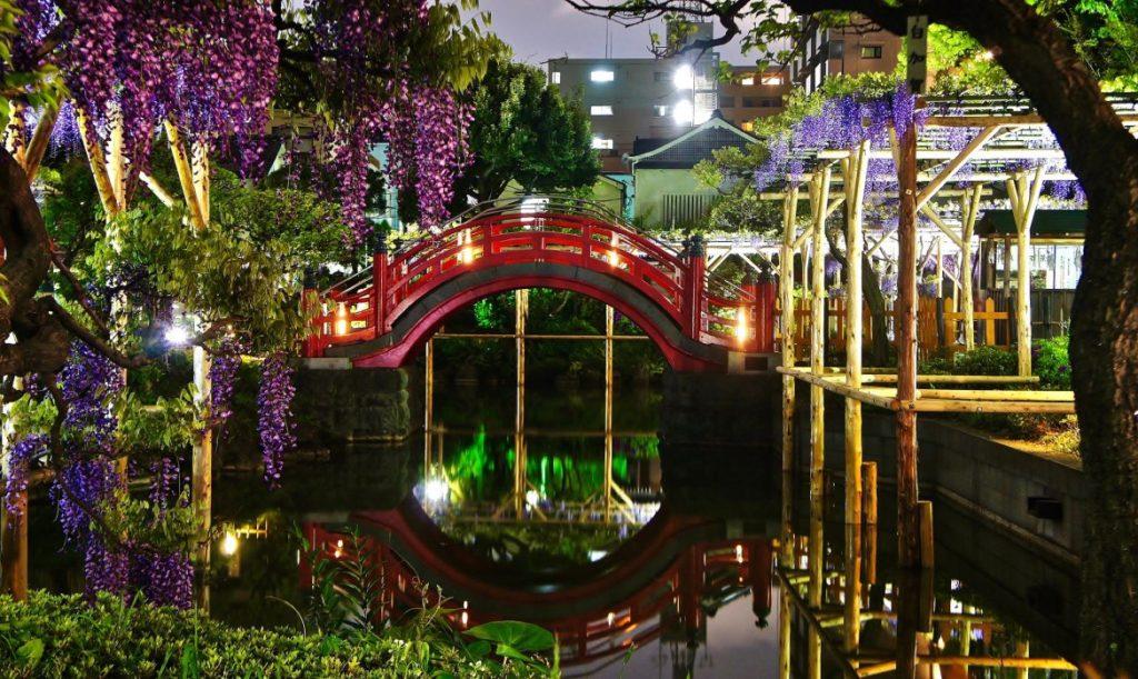 Kameido_Tenjin_Shrine-1024x611.jpg