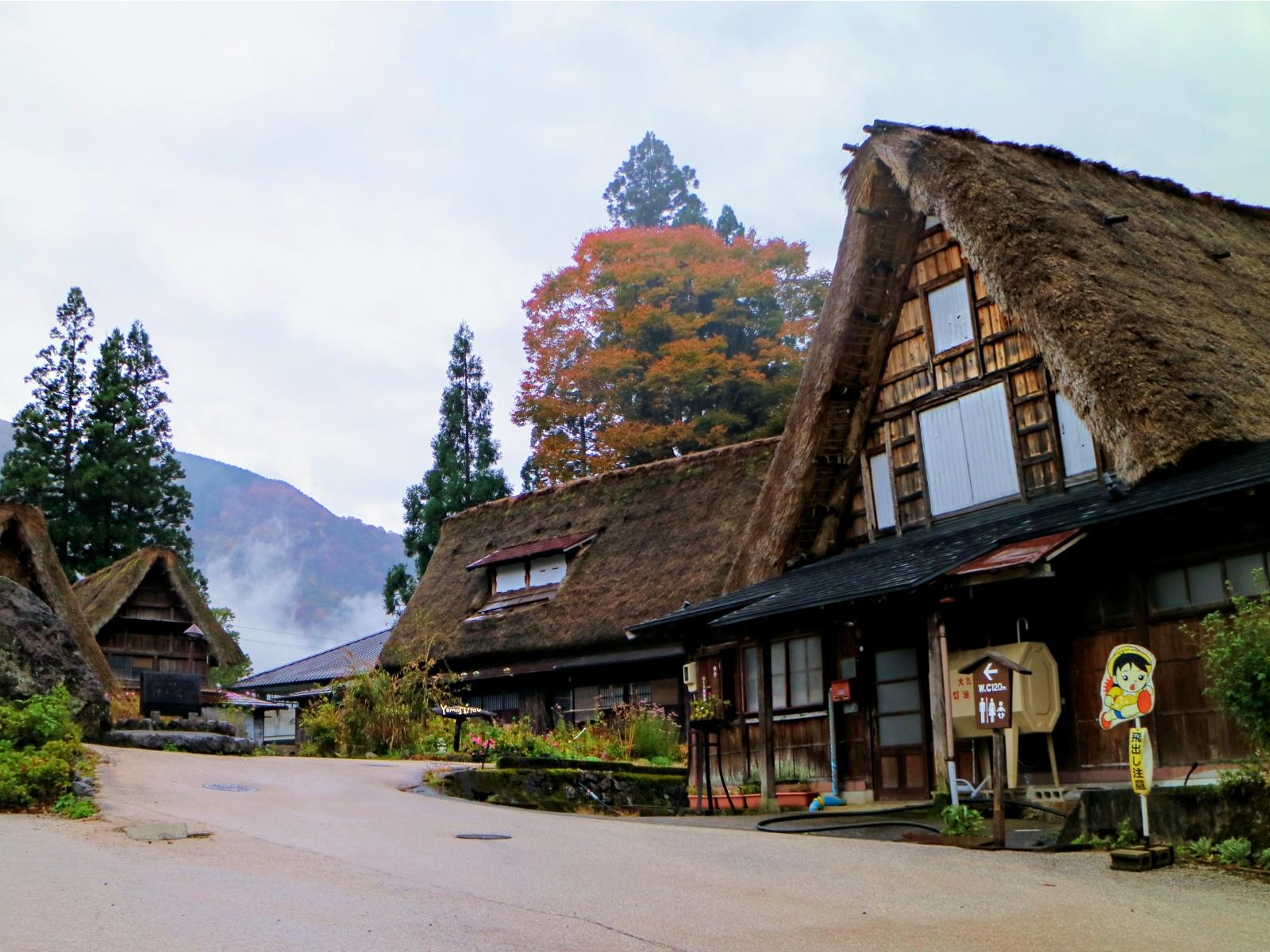 GokayamaPhoto.jpg