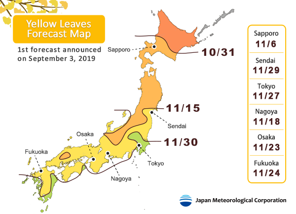 Autumn-Leaves-Japan-Fall-Foliage-Forecast-2019-Yellow-Leaves.png