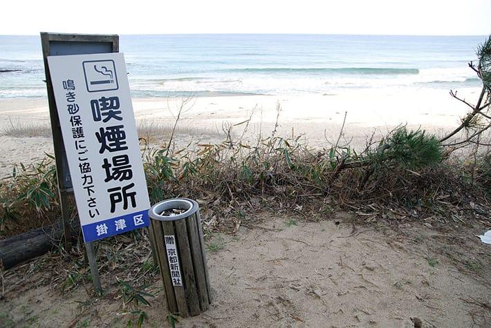 beachsmoke.jpg