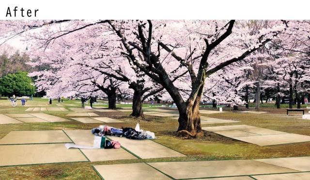 sakura-japan-tatami-sheet-cherry-blossoms-hanami-picnic-felissimo-japanese-travel-new-shopping-buy-purchase-ranking-reviews-3.jpg