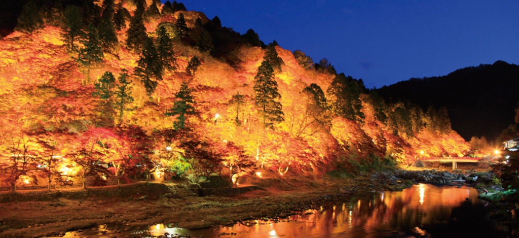 Korankei-Night-time-Koyo-Aichi-Prefecture-1024x469.jpg