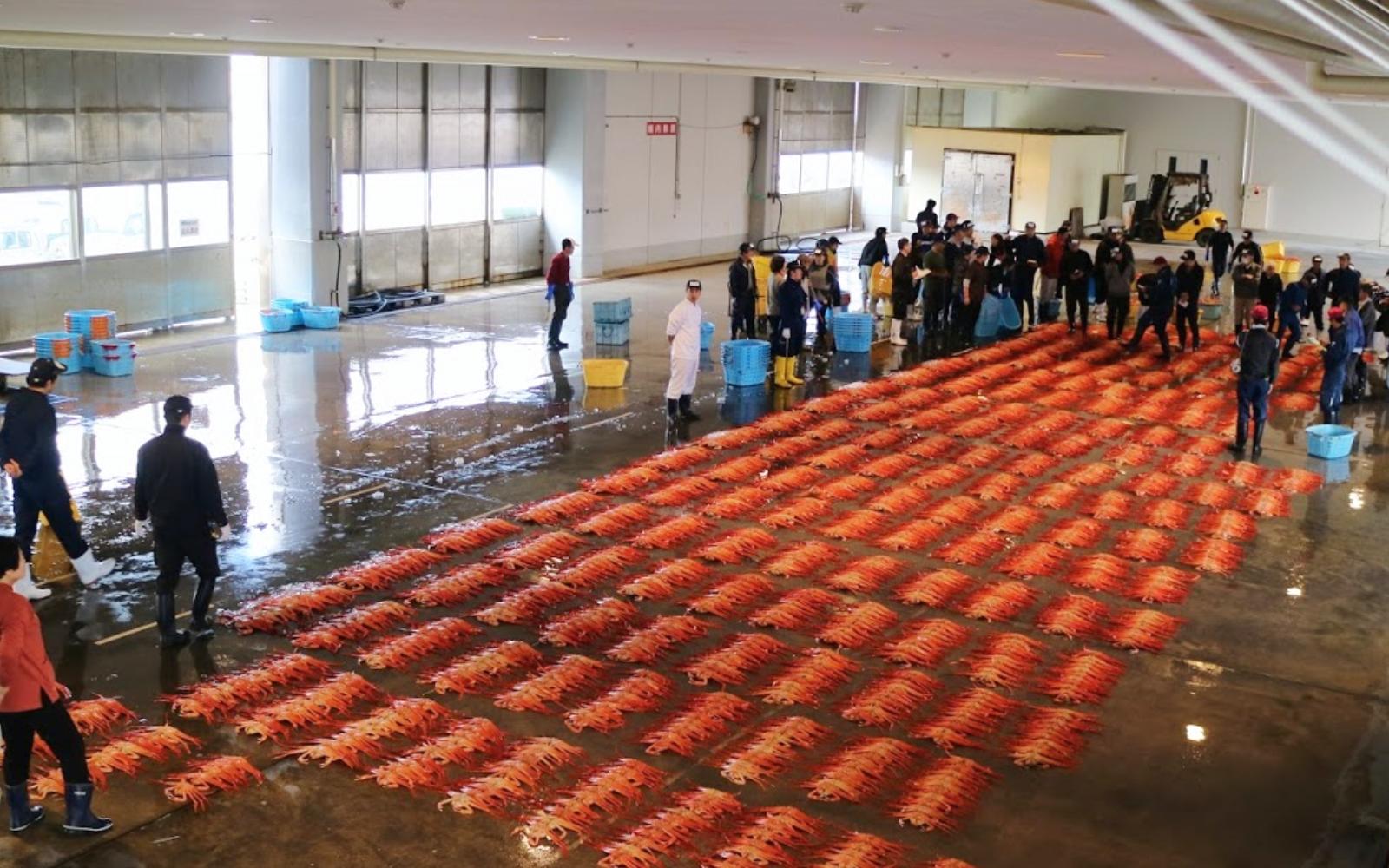 crab auction.jpg