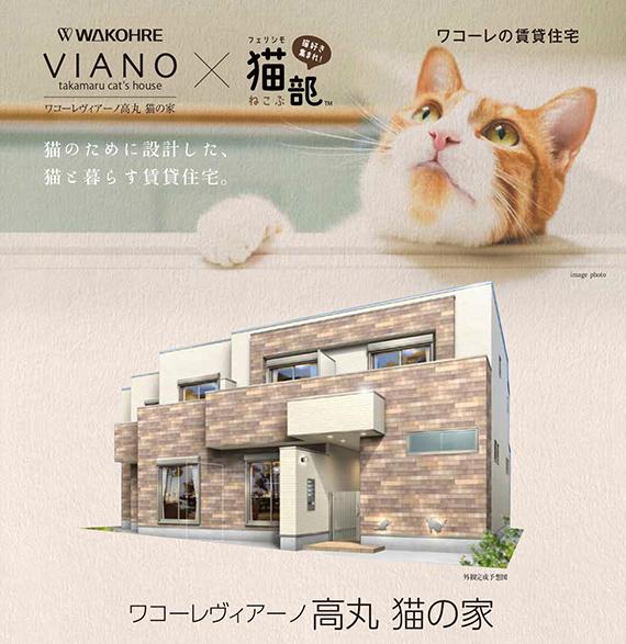cat-friendly-apartment-house-japan-cute-felissimo-cats-kawaii-love-pets-animals-kobe-rent-1.jpg