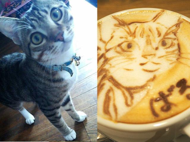 hatcoffee8.jpg