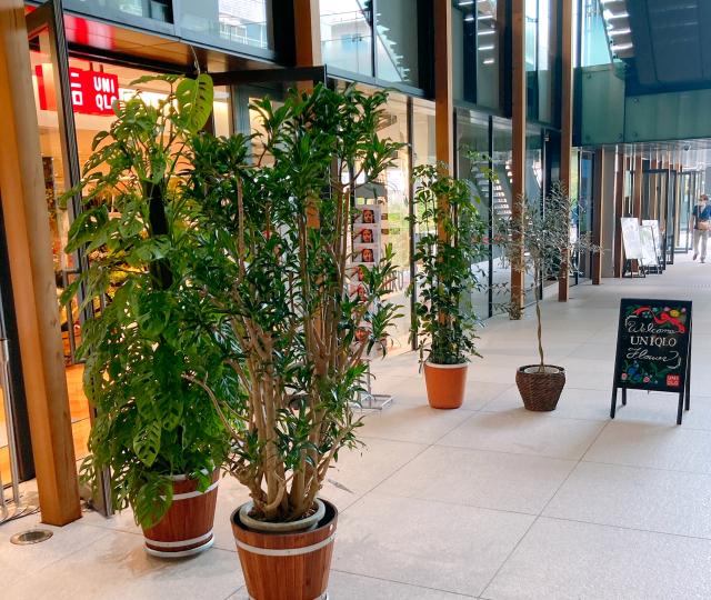 Uniqlo-flowers-Japan-Tokyo-Harajuku-floral-arrangements-fashion-shopping-online-news-2.jpg