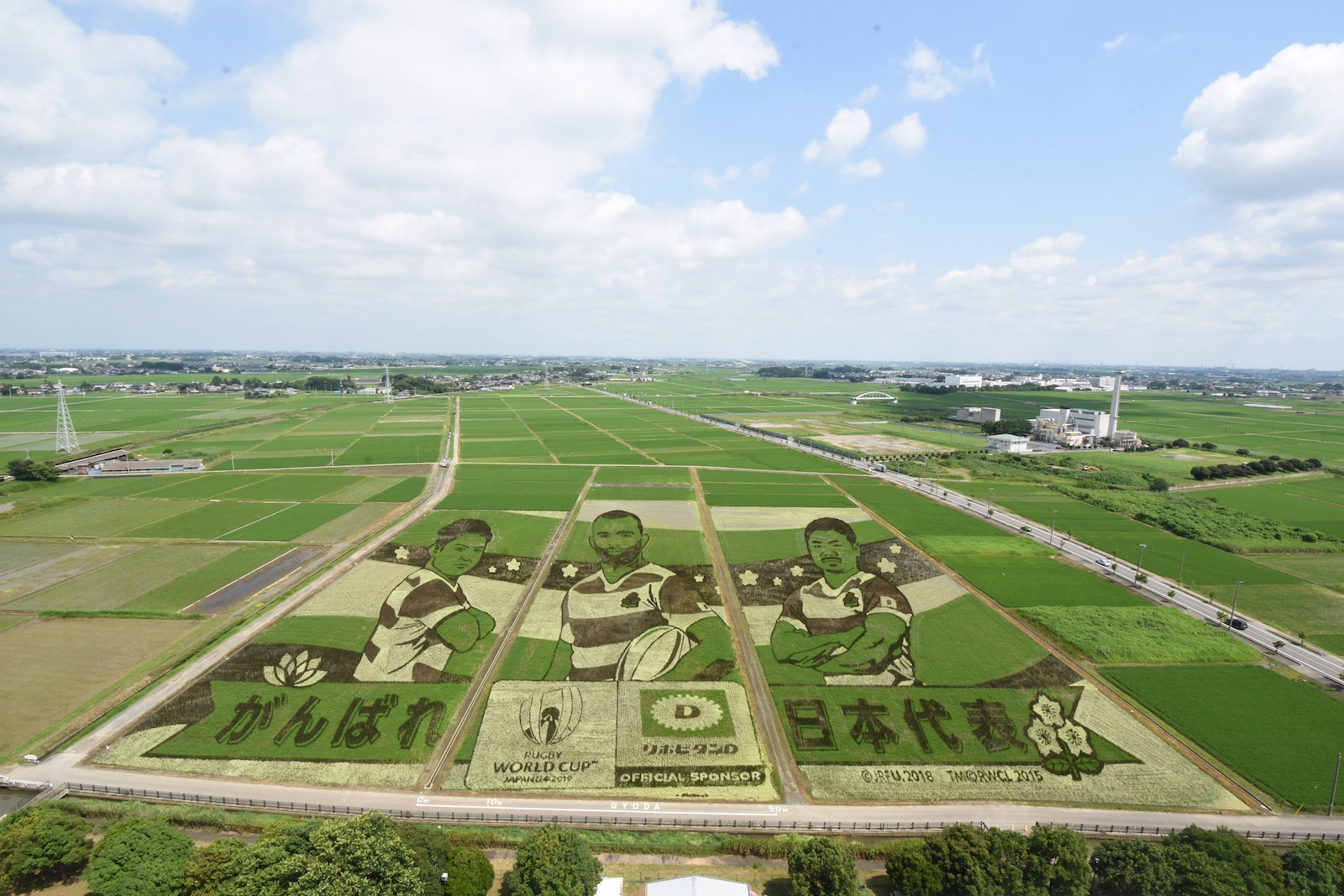 Saitama Gyoda City Rice Paddy Art for Rugby World Cup 2019.jpg