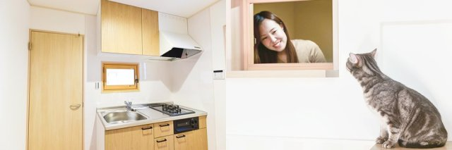 cat-friendly-apartment-house-japan-cute-felissimo-cats-kawaii-love-pets-animals-kobe-rent-10.jpg