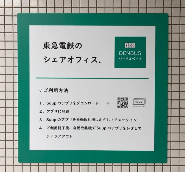 Japanese-train-Miyaz.jpg